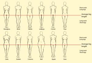 12 форм женской фигуры