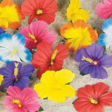 Цветки для изготовления гавайских украшений