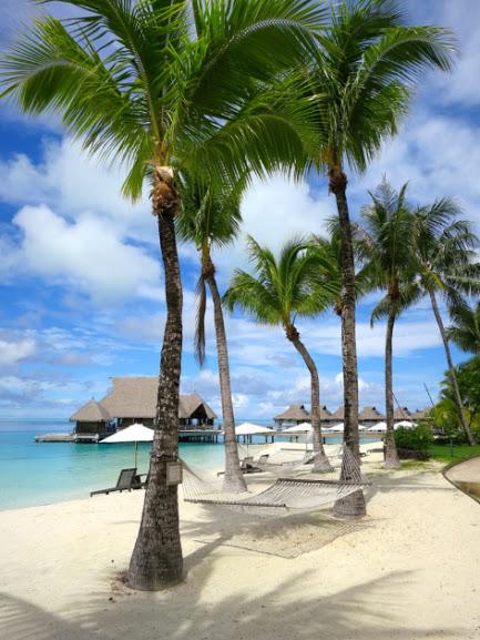 В мире есть много замечательных мест, куда можно поехать на медовый месяц