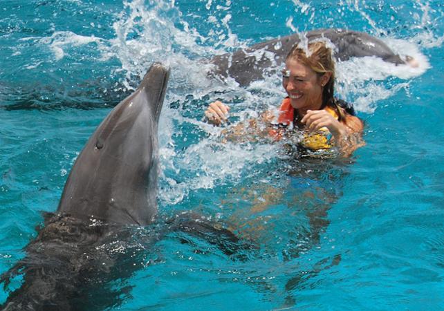 Вы можете встретиться с дружелюбными дельфинами