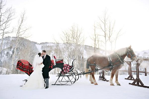 Катание на санях станет захватывающим развлечением зимой