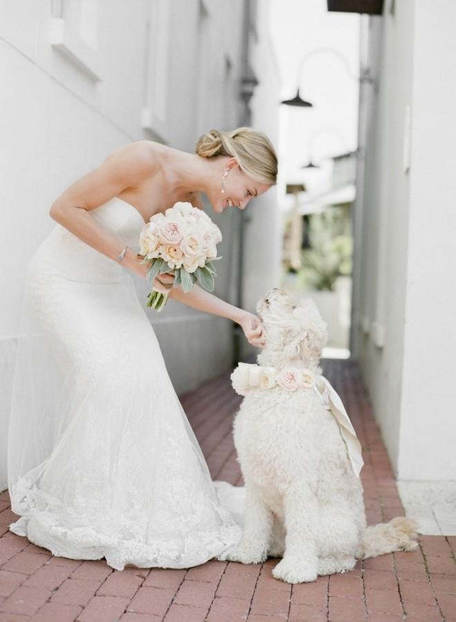 Лучшая подружка невесты