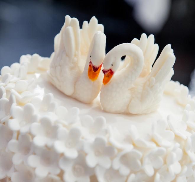 Свадебные лебеди