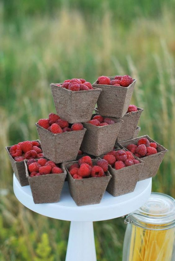 Летом вы можете разнообразить меню сезонными фруктами и овощами