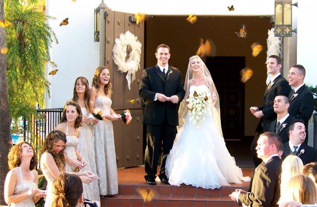 Прекрасный свадебный день