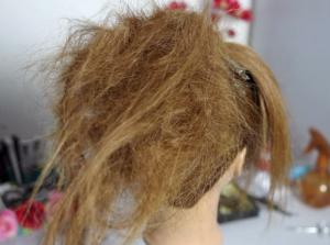Отделяем от хвоста (сзади) пряди волос и сильно начесываем их, постоянно сбрызгивая лаком